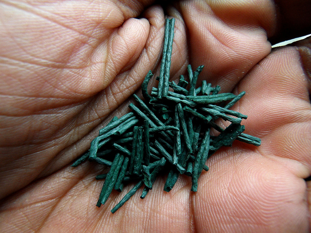 Superfood spirulina. Bron:  willpower studios, Flickr